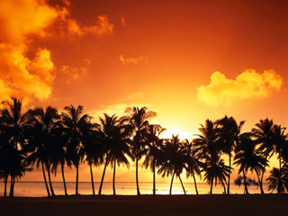 <b>Sunset beach wallpapers</b>