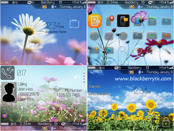 Sun flowers themes for 89,96,97