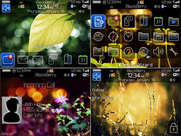 download blackberry 8900 os 6