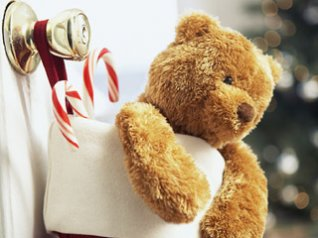 Teddy Bear in Chirstmas