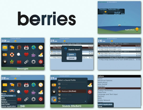 berries blackberry themes bold 9700 free