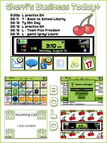 <b>Cherri's Business today+ Bold 9000 Themes</b>