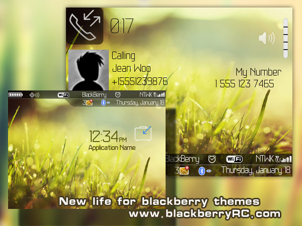 New life themes for blackberry 89xx os4.6.1
