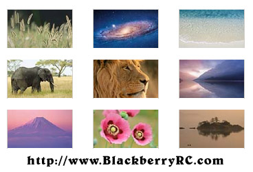 Mac OS X Lion wallpapers for blackberry playbook