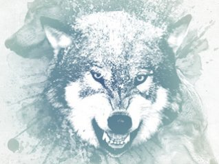 <b>white wolf wallpapers for blackberry storm</b>