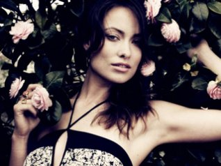 Olivia Wilde Roses wallpapers for blackberry 9780