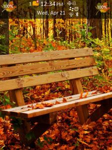 Autumn Forest os6.0 Theme for BlackBerry Torch 98
