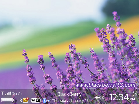 Lavender for bb curve 8900 themes os4.6.1