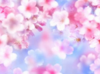 Pink flower for blackberry 9000 wallpaper
