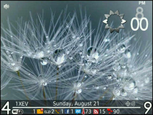 ENTWINED v1.0.0 for blackberry theme(os5.0+)