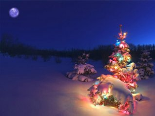 christmas night background for 360x480