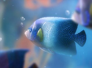 3D fish for blackberry wallpaper
