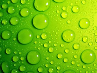 HD Green water drops FOR bb torch 9800 wallpapers