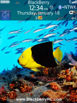 <b>Under waterHD theme for torch 9800 os6</b>