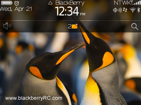 <b>Penguin blackberry theme</b>