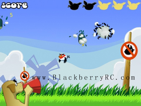 <b>Crazy Duck Hunt 1.3 for 99xx games</b>