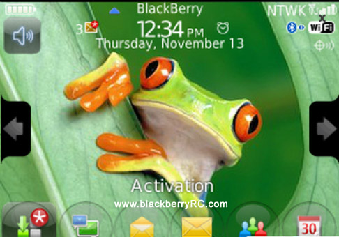 <b>Cute Lizard 1.0 for 99xx bold themes</b>