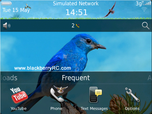 <b>Beautiful Bird 99xx bold Theme</b>